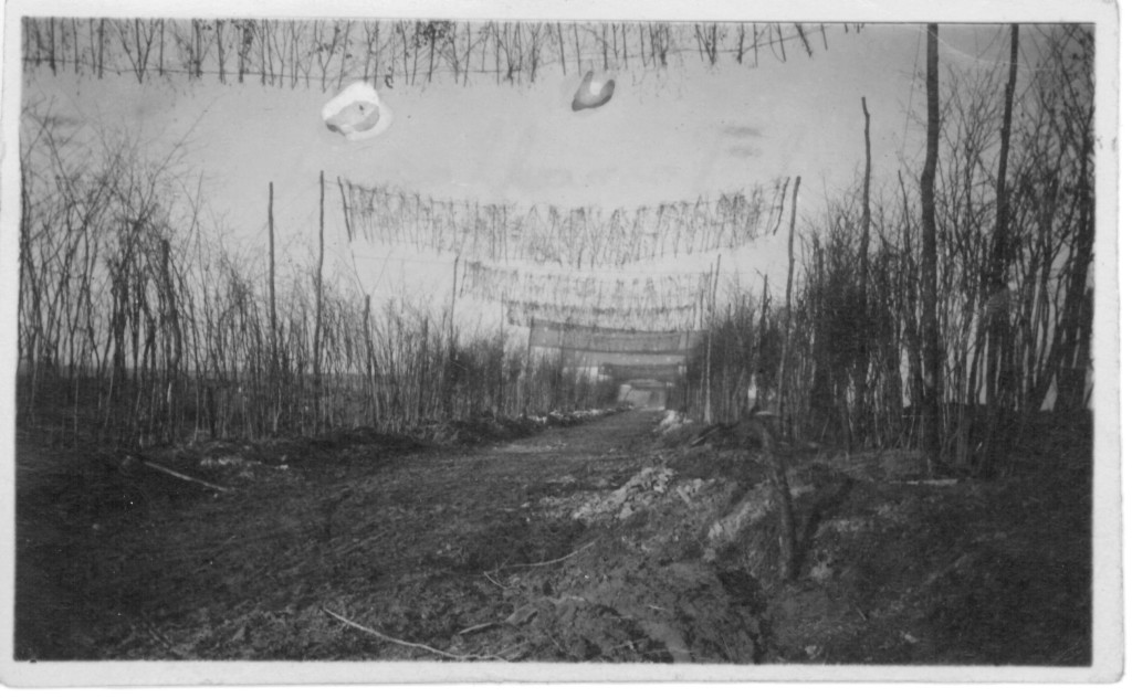 57. Bit of Camoflaged road on Chemin de dame, May 20th 1918.